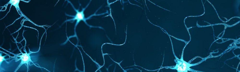 Online Event Neuroscience of change